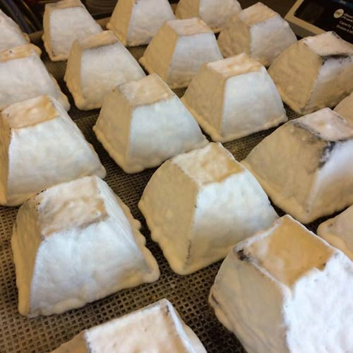Appleton Creamery Granite Kiss Aged Chevre