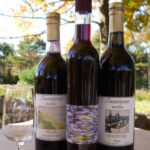 Sweetgrass-Vineyard-Blueberry-wine