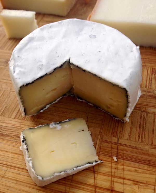 Bloomy Rind Cheese - Kennebec Cheesery in Sidney Maine